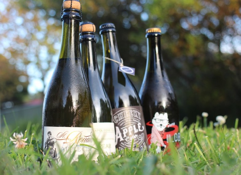 Real Cider Reviews Best Ciders of 2015